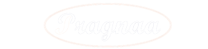 Pragnaa Shree Venture India Pvt. Ltd